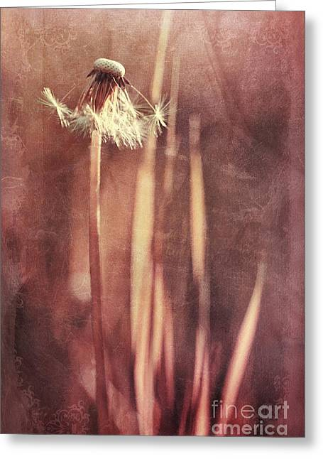 Grass Blade Greeting Cards - Once Upon A Time Greeting Card by Priska Wettstein
