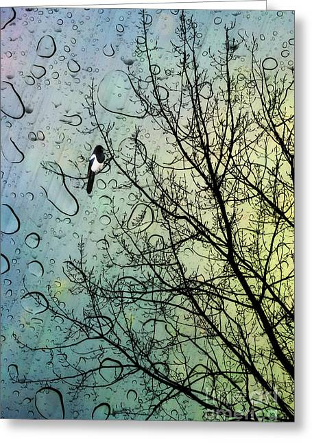 Fairies Greeting Cards - One for Sorrow Greeting Card by John Edwards