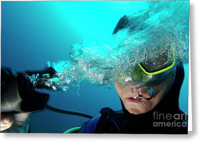 Scuba Diving Greeting Cards - One scuba diver pulls the breathing regulator out of his mouth while still underwater Greeting Card by Sami Sarkis