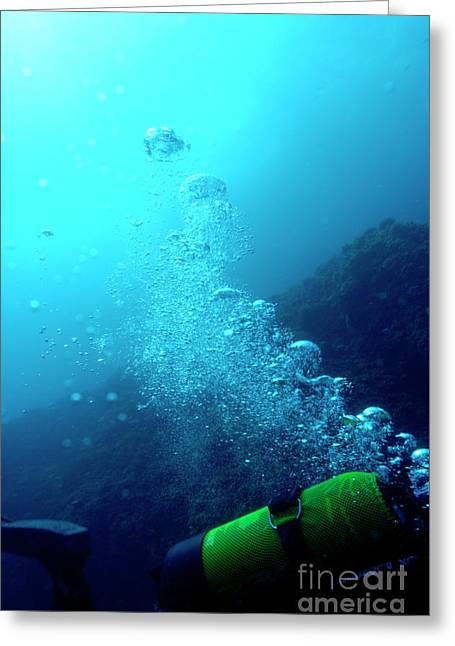 Scuba Diving Greeting Cards - One scuba diver swimming underwater and releasing bubbles Greeting Card by Sami Sarkis