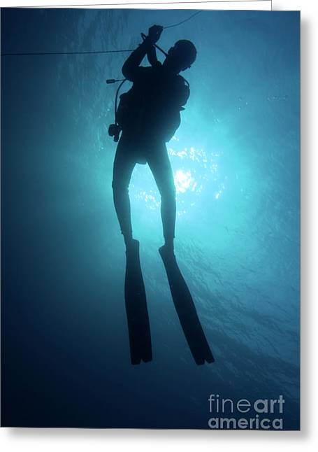 Scuba Diving Greeting Cards - One scuba diver underwater Greeting Card by Sami Sarkis