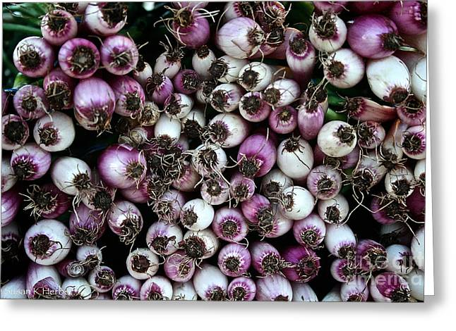 Locally Grown Greeting Cards - Onion Power Greeting Card by Susan Herber