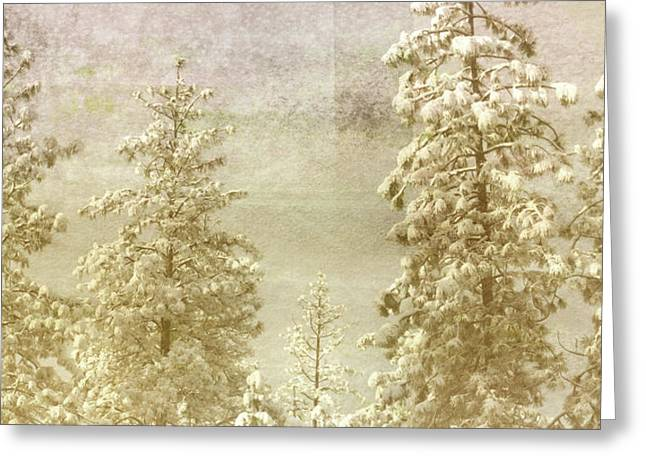 Pines Mixed Media Greeting Cards - Only This Moment Greeting Card by Bonnie Bruno