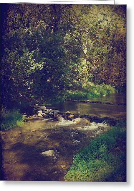Stream Digital Greeting Cards - Only Want to Hear You Laughing Greeting Card by Laurie Search