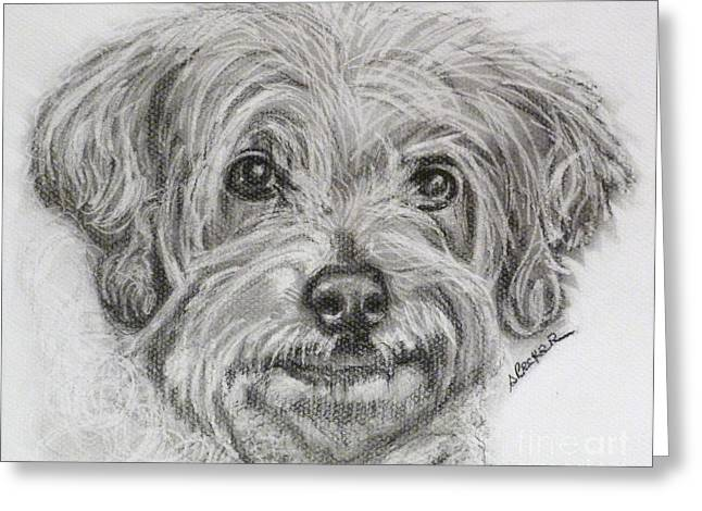 Dog Greeting Cards Greeting Cards - Only You Greeting Card by Susan A Becker