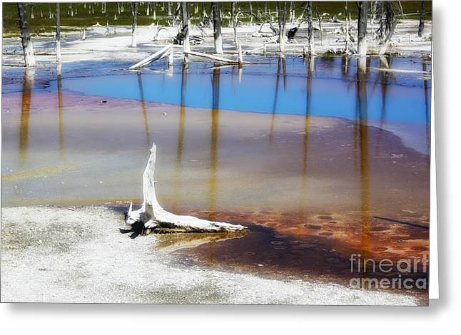 Opalescent Greeting Cards - Opalescent Pool Yellowstone NP Greeting Card by Teresa Zieba