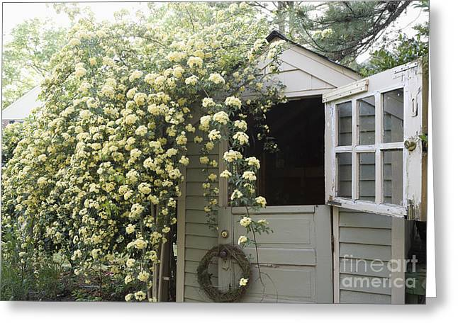 Outbuildings Greeting Cards - Open Dutch Door on Shed Greeting Card by Roberto Westbrook