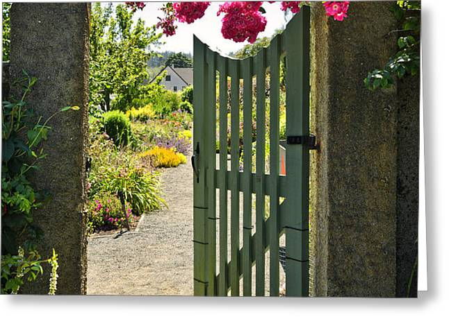 Open garden gate with roses Greeting Card by Elena Elisseeva