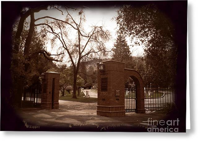 Ttv Greeting Cards - Open Gate at Madronia Greeting Card by Laura Iverson