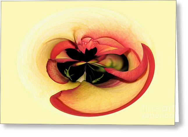 Open to Imagination Greeting Card by Teresa Zieba