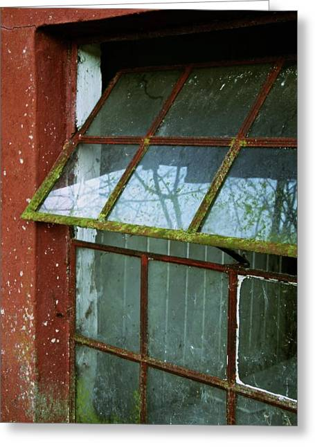 Looking In Greeting Cards - Open Window Greeting Card by Odd Jeppesen