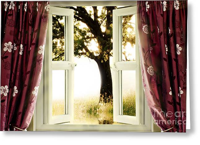 White Cloth Photographs Greeting Cards - Open window to tree Greeting Card by Simon Bratt Photography LRPS