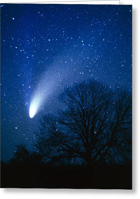Hale-bopp Comet Greeting Cards - Optical Image Of Comet Hale-bopp, 6 April 1997 Greeting Card by Detlev Van Ravenswaay