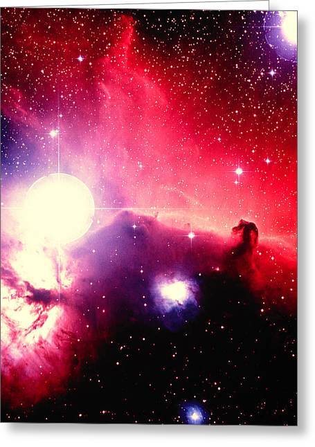 Horsehead Greeting Cards - Optical Image Of Horsehead Nebula And Sur Greeting Card by Celestial Image Picture Co.