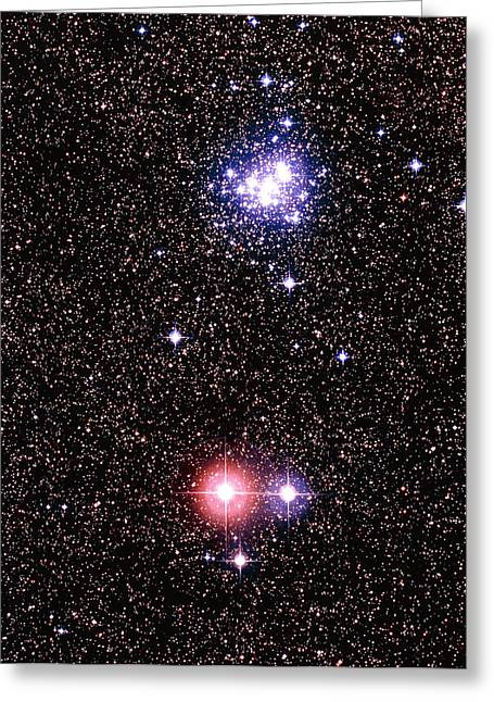 Open Clusters Greeting Cards - Optical Image Of Open Star Cluster Ngc 6231 Greeting Card by Celestial Image Co.