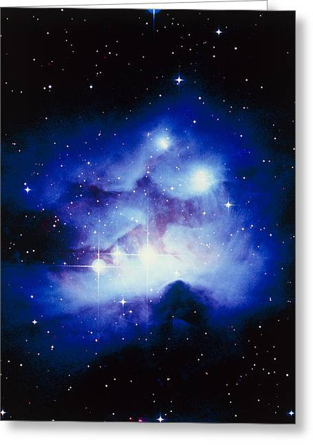 Orionis Greeting Cards - Optical Image Of The Nebula Ngc 1977 In Orion Greeting Card by Celestial Image Co.
