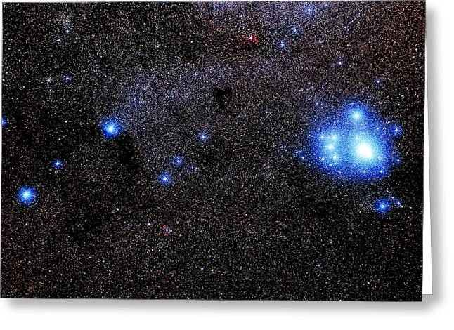 Open Clusters Greeting Cards - Optical Image Of The Open Star Cluster Ic 2602 Greeting Card by Celestial Image Co.