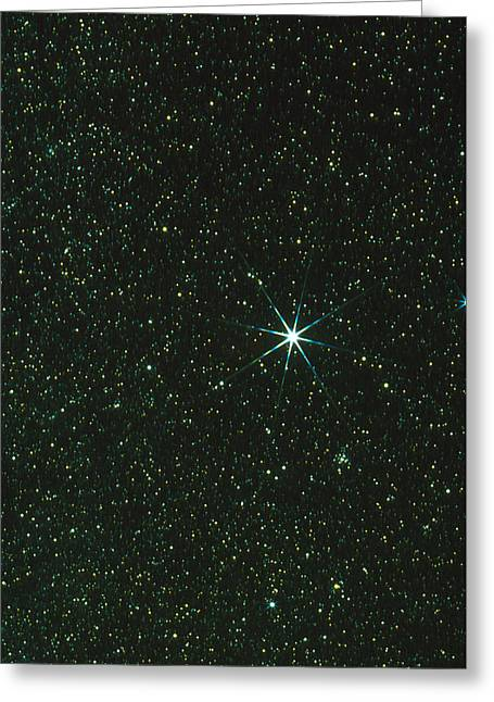 Sirius Greeting Cards - Optical Image Of The Star Sirius Greeting Card by John Sanford