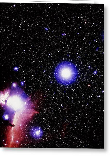 Horsehead Greeting Cards - Optical Image Of The Stars Of Orions Belt Greeting Card by Celestial Image Co.