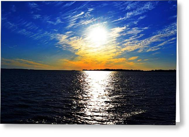 Cedar Key Greeting Cards - Orange And Blue Pride Greeting Card by Tammy  Shiver