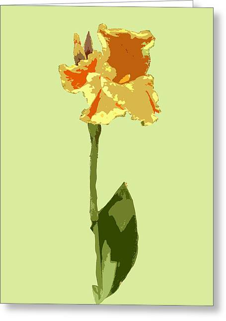 Orange And Yellow Flower Greeting Card by Karen Nicholson