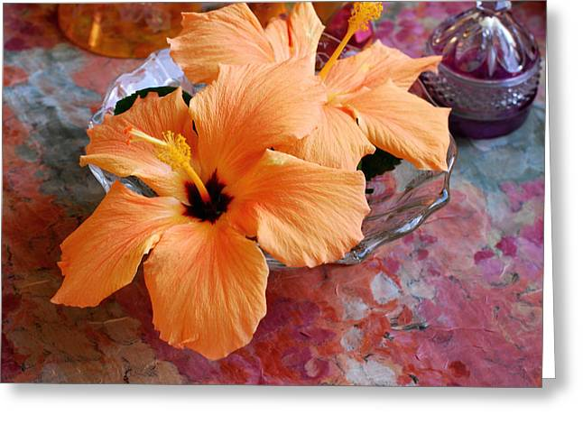 Gleem Greeting Cards - Orange Hibiscus With Purple Greeting Card by Connie Fox
