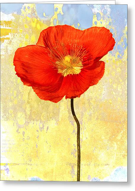 Saturated Greeting Cards - Orange Iceland Poppy on Yellow and Blue Greeting Card by Carol Leigh