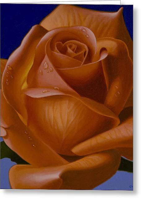 Hyper-realism Paintings Greeting Cards - Orange Rose with Blue Background Greeting Card by Tony Chimento