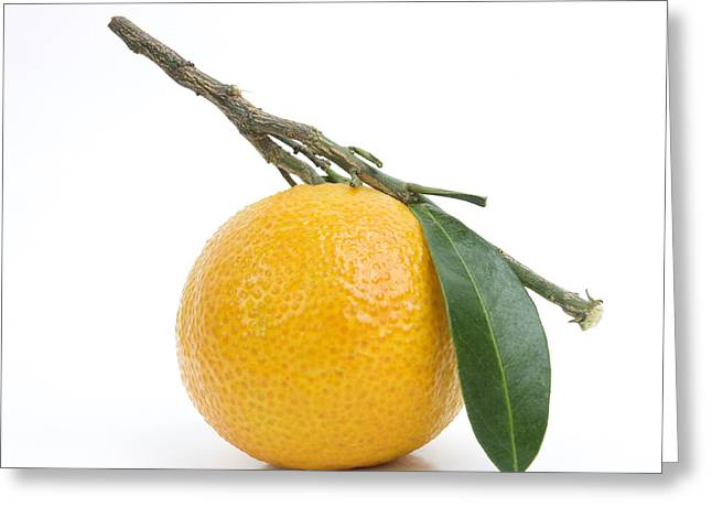 Orange Satsuma Greeting Card by Bernard Jaubert