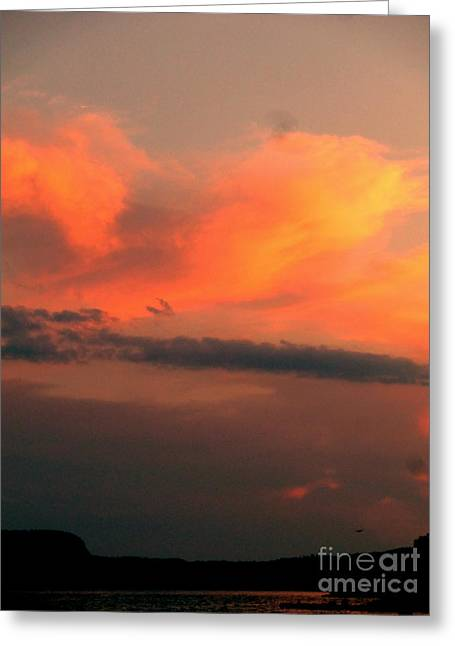Nature Pyrography Greeting Cards - Orange Sky Greeting Card by Sue Wild Rose