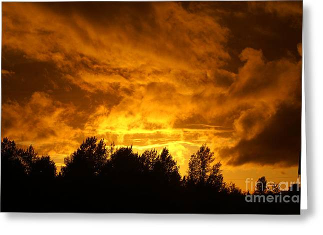 Orange Stormy Skies Greeting Card by Randy Harris
