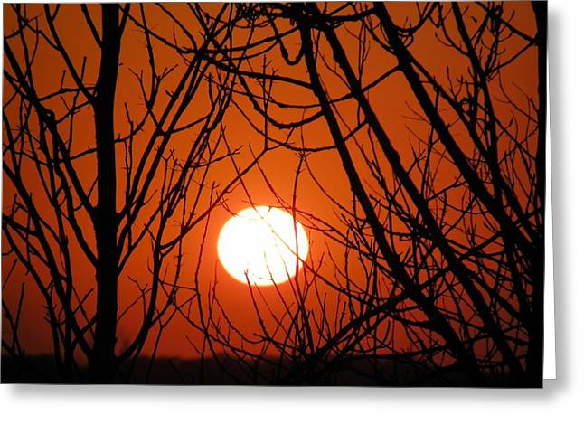 Sunset Posters Greeting Cards - Orange Sunset In North Dakota Greeting Card by Christy Patino