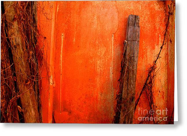 Gypsy Greeting Cards - Orange Wall by Michael Fitzpatrick Greeting Card by Olden Mexico