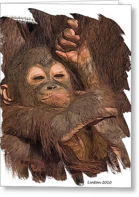 Orangutan Greeting Cards - Orangutan Baby Greeting Card by Larry Linton