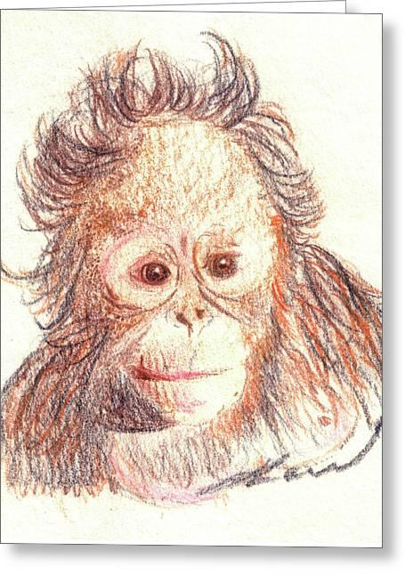 Orangutan Greeting Cards - Orangutan Greeting Card by Julie L Hoddinott