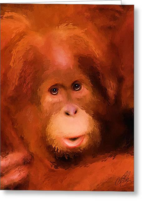 Orangutans Greeting Cards - Orangutan Greeting Card by Michael Greenaway