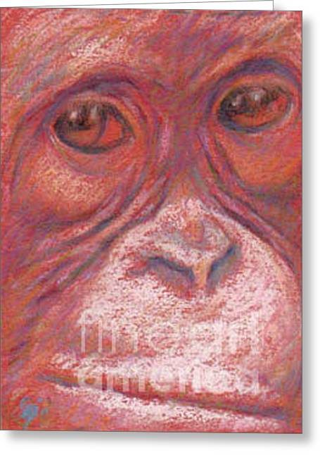 Orangutan Pastels Greeting Cards - Orangutan Greeting Card by Suzie Majikol-Maier