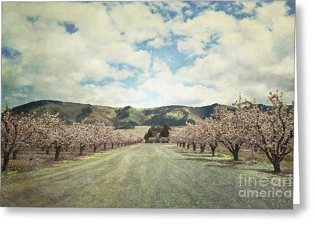 Pastel Mountains Prints Greeting Cards - Orchard Farm Road Greeting Card by Andrea Hazel Ihlefeld