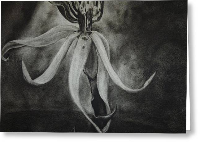 Orchid in Black-and-White Greeting Card by Estephy Sabin Figueroa