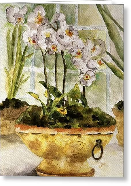Still Life By Window Greeting Cards - Orchids by the Window Greeting Card by Lynne Furrer