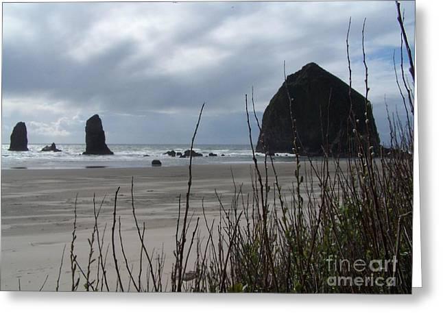 Oregon Coast Greeting Card by Randy Edwards