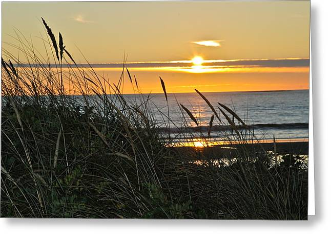 Sunset Seascape Greeting Cards - Oregon Coast Sunset Greeting Card by Liz Vernand