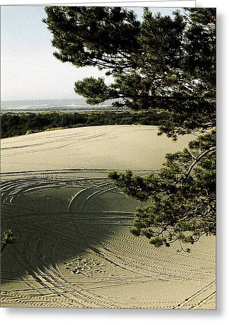 Oregon Dunes National Recreation Area Greeting Cards - Oregon Dunes 3 Greeting Card by Eike Kistenmacher