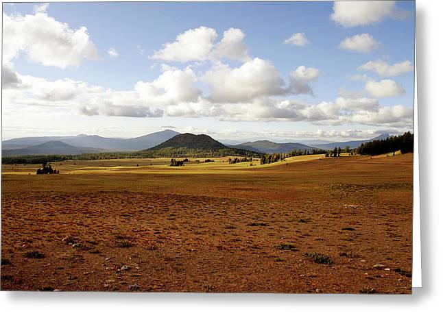 Rolling Hills Greeting Cards - Oregon My Oregon Greeting Card by Christine Till