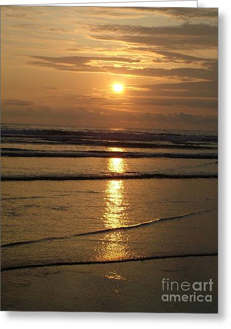 Photos Of The Ocean Greeting Cards - Oregon Sunset Greeting Card by Nick Gustafson