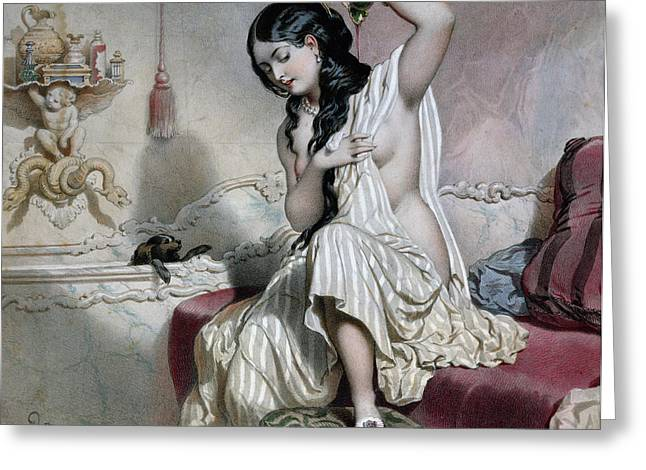 Turkish Paintings Greeting Cards - Oriental Woman at her Toilet Greeting Card by French School