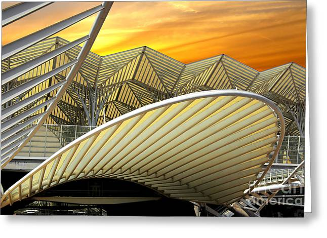 Sunset Abstract Photographs Greeting Cards - Oriente Station Greeting Card by Carlos Caetano