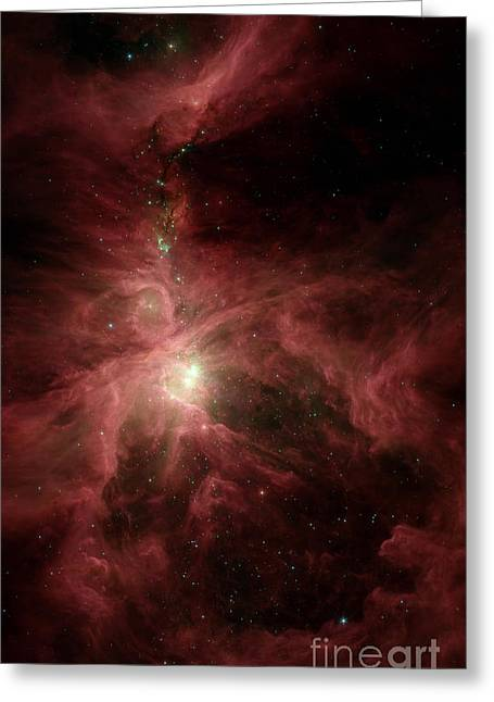 Interstellar Space Photographs Greeting Cards - Orions Inner Beauty Greeting Card by Stocktrek Images