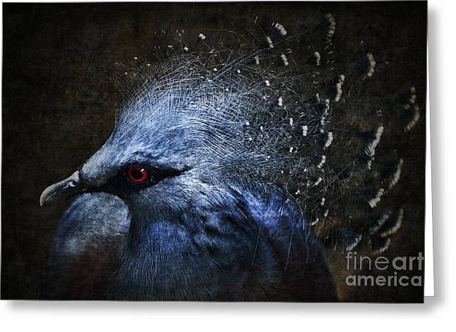 Crowned Head Greeting Cards - Ornamental Nature Greeting Card by Andrew Paranavitana
