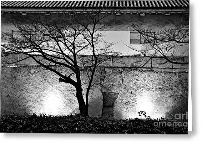 Osaka Greeting Cards - Osaka Castle Wall Greeting Card by Dean Harte